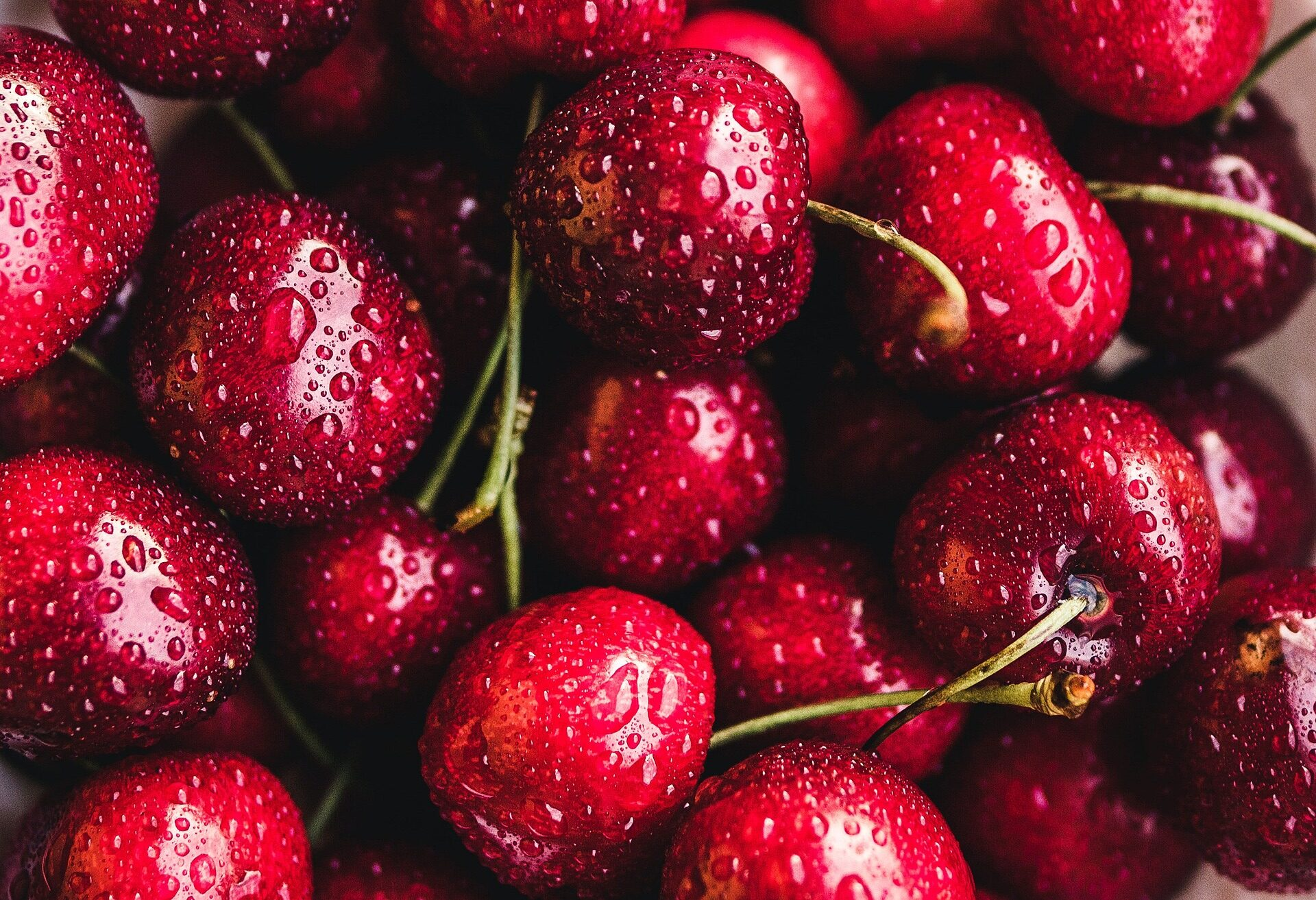 """May Your Days be """"Cherry"""" and Bright: Cherry Liqueurs for the Holidays"""